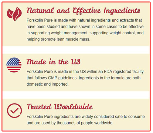 What is Forskolin Pure